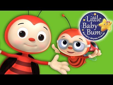 Ladybird Ladybird | Nursery Rhymes | Original Song By LittleBabyBum!