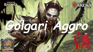 Magic Arena MTGA: Golgari Aggro Deck #1 - Guilds of Ravnica - Standard Contructed