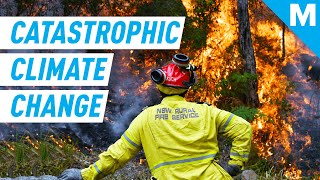 How CATASTROPHIC Is The Future Of CLIMATE CHANGE? | Mashable Explains