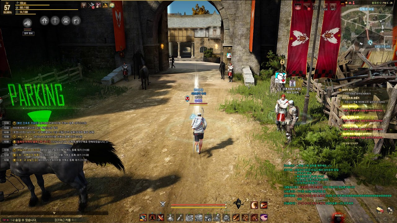 Black Desert Online: How much does the new Optimization Setting