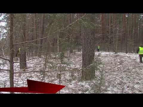 Екатеринбурге нашли 9-летнего мальчика, который пропал 6 дней назад