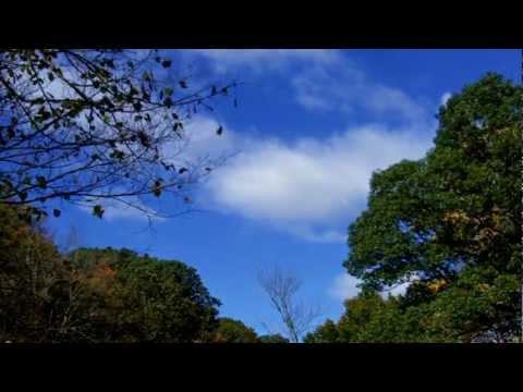 The Charms - Ena kalokeri perase (Ένα καλοκαίρι πέρασε)