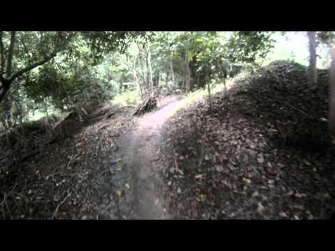 Markham park mountain bike trails - Alligator Ally