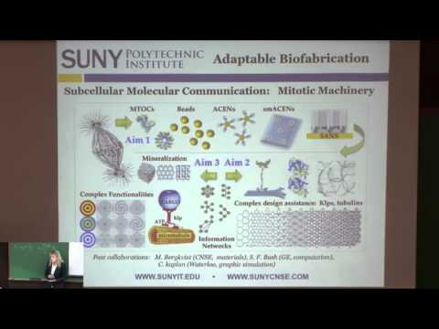Janet Paluh: Biological Platforms in Self-Assembly and Dynamic Restructuring