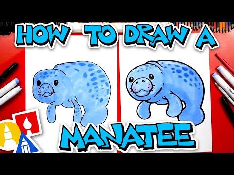 How To Draw A Cartoon Manatee