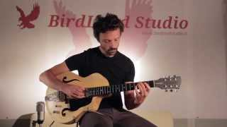 Birdland Studio - Instrument Showcase with Riccardo Chiarion