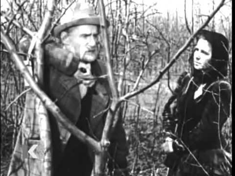 Aleksandr Dovzhenko. Michurin (1947)