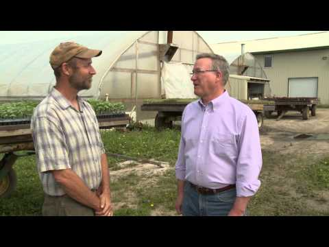 Farm Connections 803: Organic farming and bees in an apple orchard