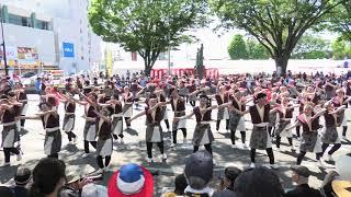 「名古屋学生チーム『鯱』」豊川おいでん祭2019【郵便局前】