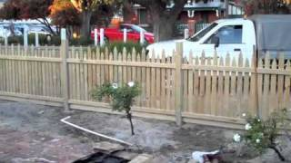 Pine Picket Fence & Gates