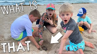 You Won't Believe What We Dug Up At the Beach!!