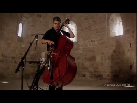 FLAMENCO ON UPRIGHT BASS