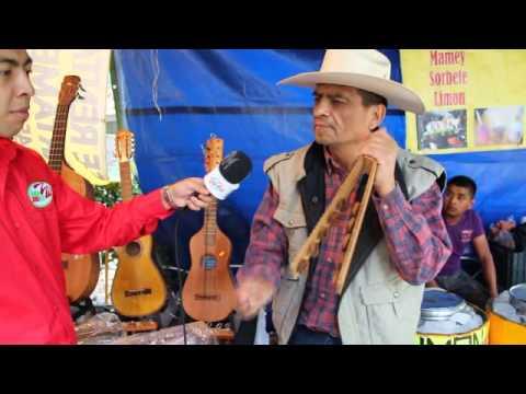 Rodrigo González te muestra el sonido de la jarana en Son para Milo