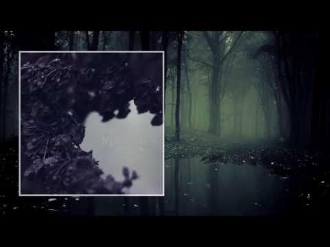 Nebelung — Palingenesis [Full Album]