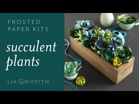 DIY Frosted Paper Succulent Plants : Easy to Use Paper Flower Kit for Beginners (full tutorial)