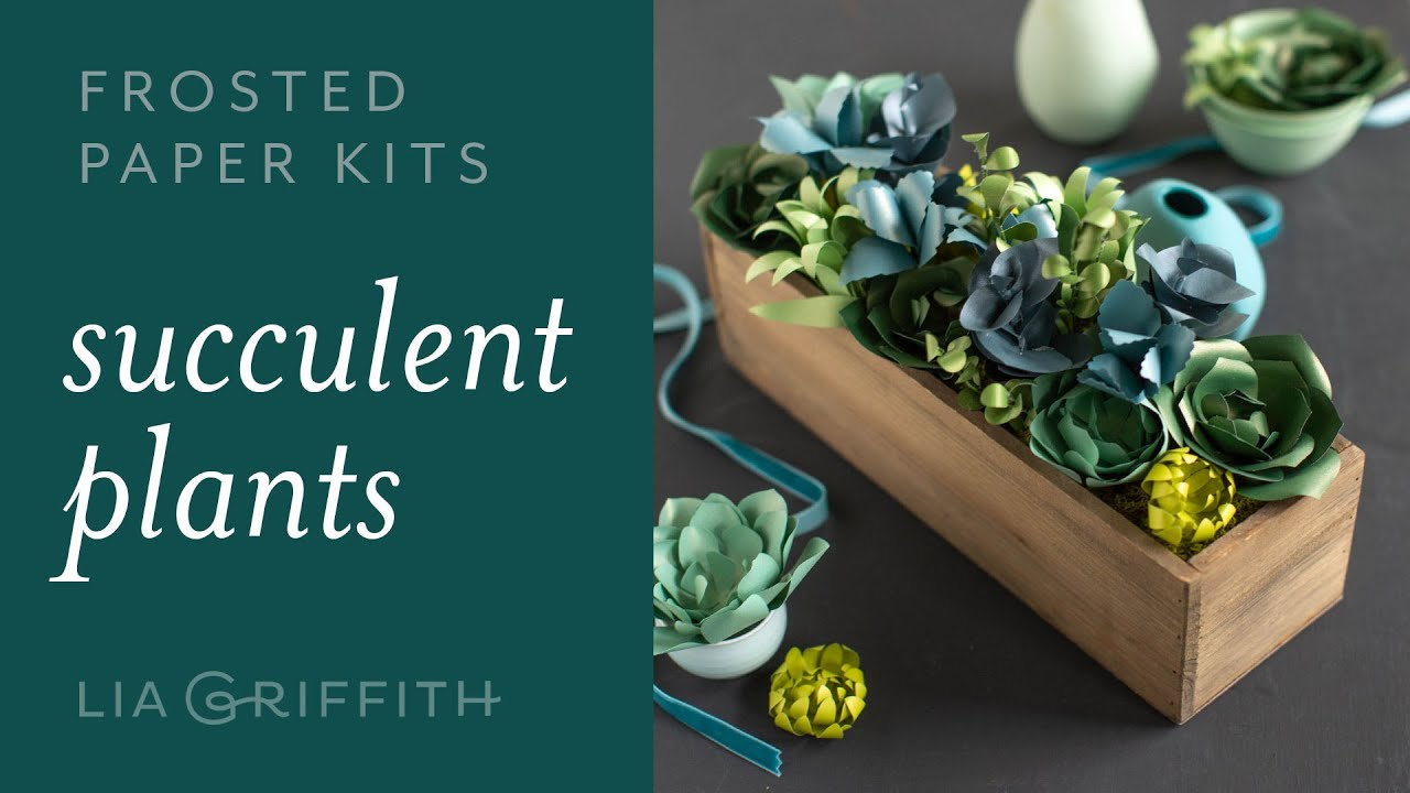 Video Tutorial: NEW Frosted Paper Succulents Kit