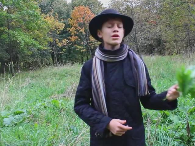 Изображение предпросмотра прочтения – АртёмКаменщиков читает произведение «Листопад (Осенняя поэма)» И.А.Бунина