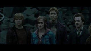 Harry Potter - Battle Scars