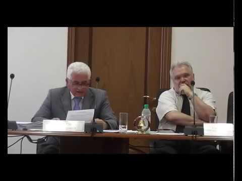Вынесение на обсуждение согласования ограждающих устройств 804 Камушки