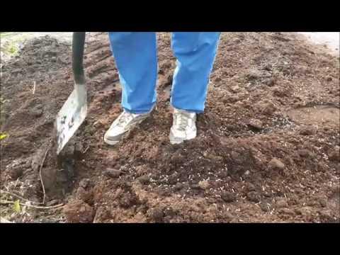 Przygotowanie Podloza Pod Warzywa Kwiaty I Inne Rosliny Wiosna Youtube