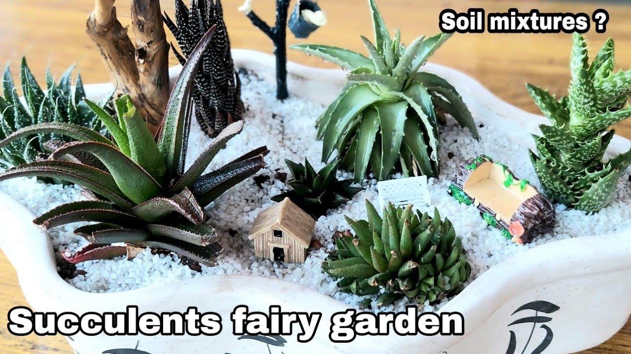 Succulent fairy garden ideas, Easiest soil mixtures for ...