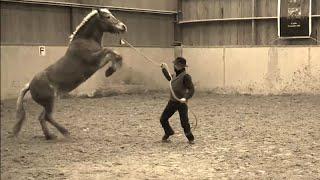 Vidéos European Horsemanship : une journee de stage pour régler les problemes