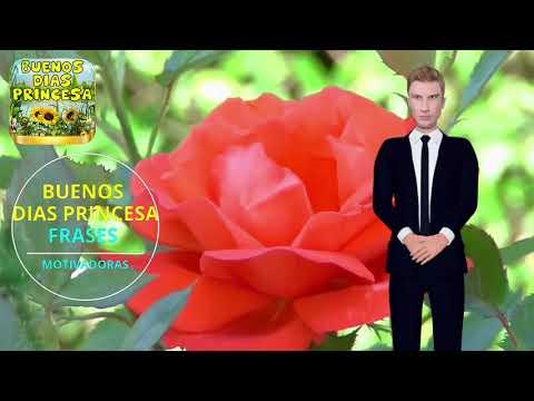 Buenos Dias Princesa Aplicaciones En Google Play