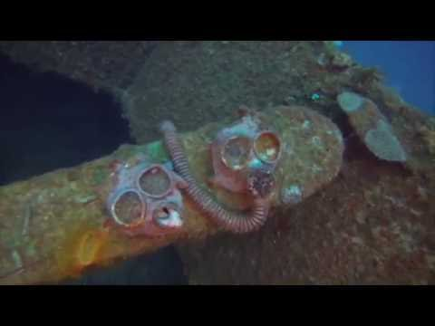 Diving the Nippo Maru - Truk Lagoon - WWII Japanese ship wreck