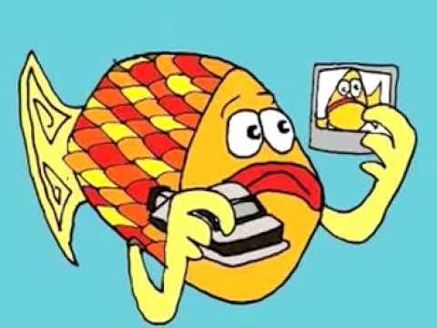 Artists similar to Goldfish