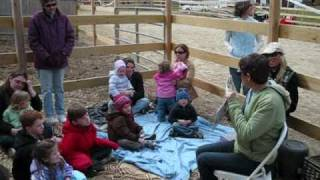 Learning about Horses and Hippotherapy at Divinity Farm in Groveland, Massachusetts