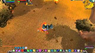 Huffa: Feral Druid PvP (TBC)