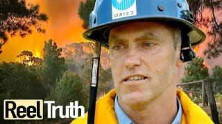Inside The Wildfire: Episode 2 (Bushfires in Australia)   Full Documentary   Reel Truth