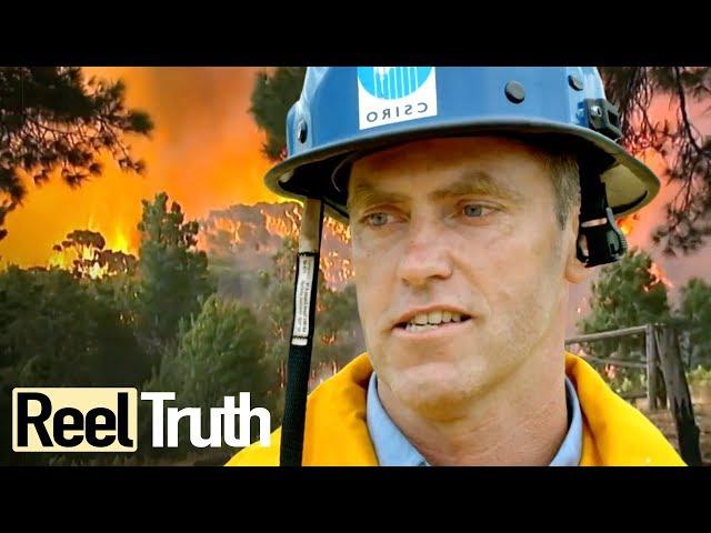 Inside The Wildfire: Episode 2 (Bushfires in Australia) | Full Documentary | Reel Truth
