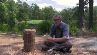 Make A Swedish Log Stove And Camp Chair Without Cordage Or Nails