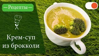 Крем-суп из Брокколи - Простые рецепты вкусных блюд