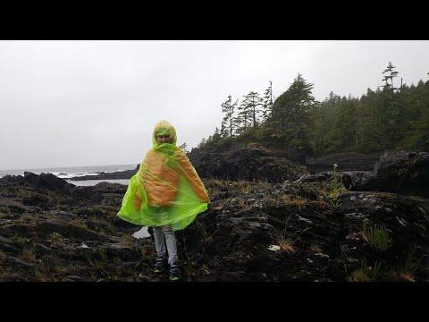 Botanical Beach, Provincial Park Vancouver Island, BC, Canada