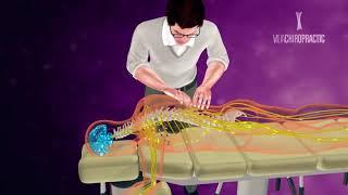 Entenda a Quiropraxia de uma maneira bem simples