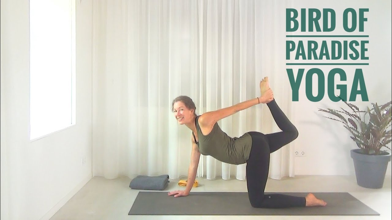 Bird Of Paradise Yoga Youtube