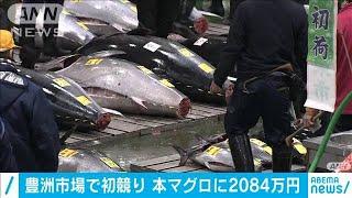 豊洲市場で初競り 大間産の本マグロに2084万円(2021年1月5日) - YouTube