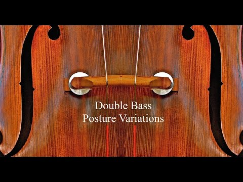 Double Bass Posture Variations