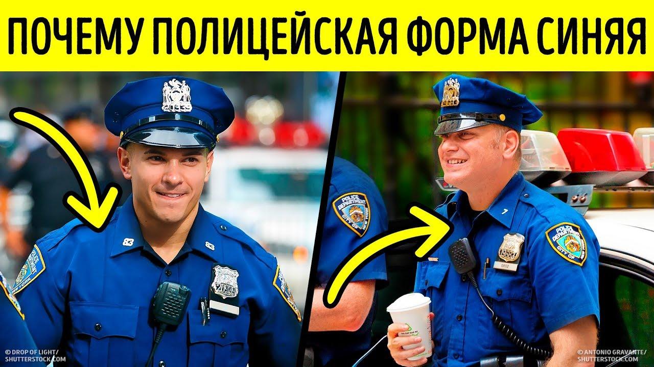 Почему в полиции синяя форма