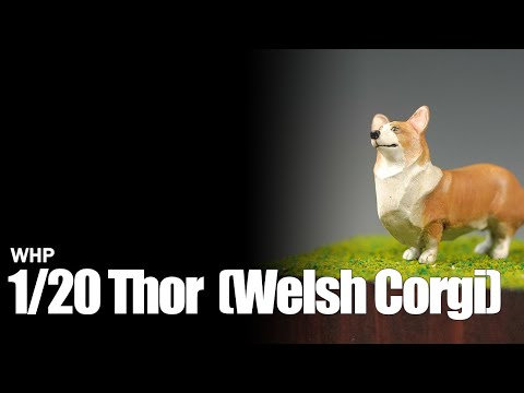 WHP 1/20 토르 (Welsh Corgi)