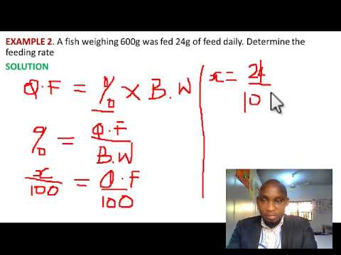 ESTIMATING THE CORRECT AMOUNT OF FISH FEED 20200128 6