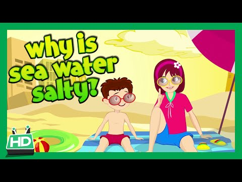 WHY IS SEA WATER SALTY?