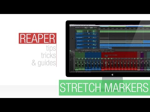 Reaper Tutorial: Stretch Markers - The Basics
