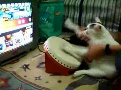20 Adorable Cats Who Made Video Game History - GameSpot