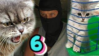Неожиданный поворот - СПАСЕНИЕ КОТЕНКА со свалки для кота Макса
