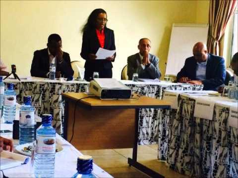 Ms. Asghedet Paltalk Presentation on Nairobi Consultative Conference Part II