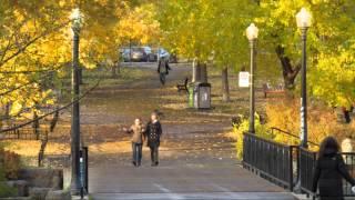 Après midi d'automne au Parc Lafontaine
