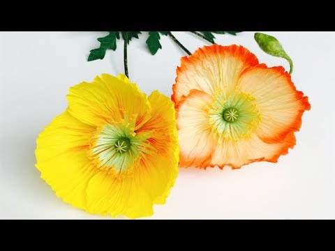 ABC TV | How To Make Poppy Paper Flower From Crepe Paper - Craft Tutorial